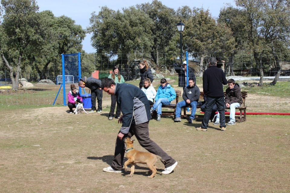 luring con Cachorro  EFPC 2012-2013