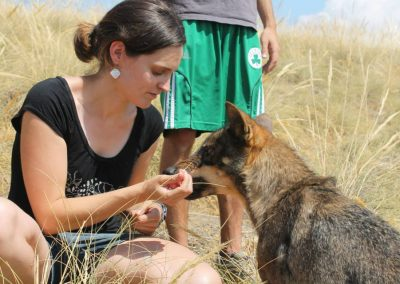 Ainhioa-Luengo-curso-intensivo-de-terapia-asistida-con-animales-2013
