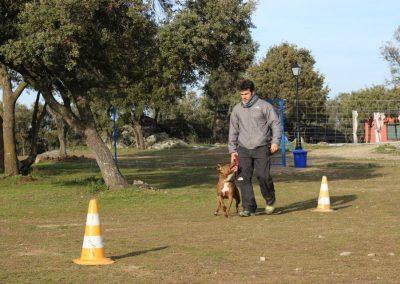 Alumno-de-EFPC-MADRID-2012-2013-.-J.L-Gonzalez-con-su-perro-nesta