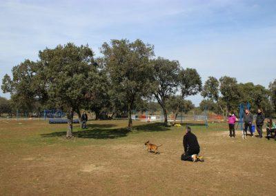llamada-cachorro-EFPC-2012-2013